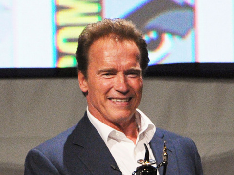 Arnold Schwarzenegger Spotted with Mystery Brunette