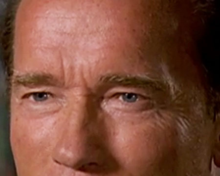 Video! Arnold Schwarzenegger on His Affair and New Tell-All Book