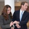 Prince William Revamps Website, Shares New Photos