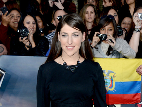 Mayim Bialik and Husband Michael Stone Split