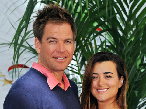 Vote! Should 'NCIS' Stars Ziva and Tony Hook Up?