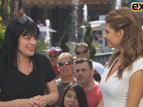 At The Grove! Star Pauley Perrette on Her Best 'NCIS' Looks