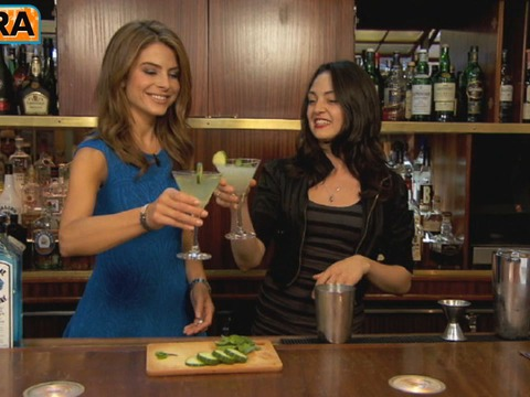 Summer Sipper: The Cucumber Martini