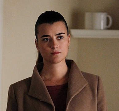 Extra Scoop: 'NCIS' Is Looking for Ziva's Successor