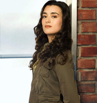 Ziva's Successor: What We Know About the 'NCIS' Newbie