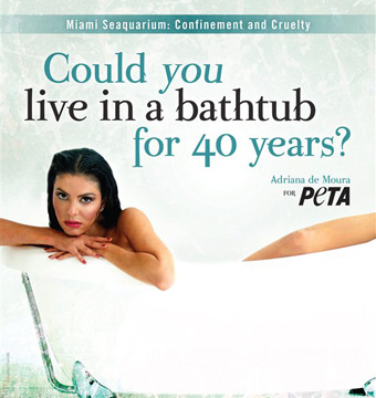 'Real Housewives' Star Adriana de Moura's Racy New Peta Ad