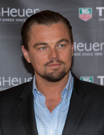 Does Leonardo DiCaprio Have a New Model Girlfriend?