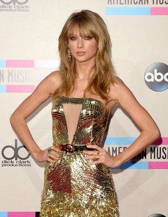 On the 2013 AMAs Red Carpet