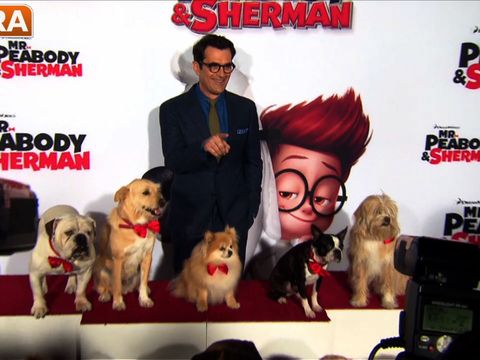 Watch! Dogs Take Over the Red Carpet at 'Mr. Peabody & Sherman' Premiere