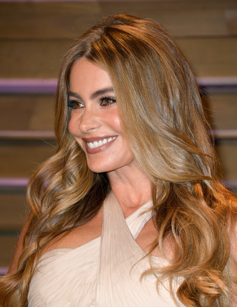 Sofia Vergara Reveals She Is Too Busy to Get Married