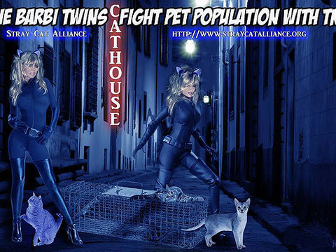 Barbi Twins Want You to Adopt a Cat!