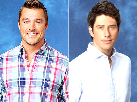 Meet the New 'Bachelor'!