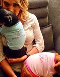 Baby News! Carrie Underwood Is Pregnant