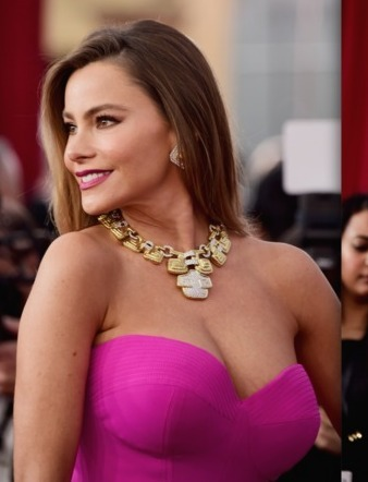 Pics! The 2016 SAG Awards Red Carpet