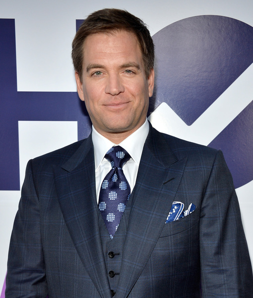 Michael Weatherly Drops Serious Hint About How DiNozzo Will Go Out on 'NCIS'