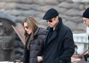 Brad & Angelina's Alleged Fight: Travel Plans, Plane Details,…
