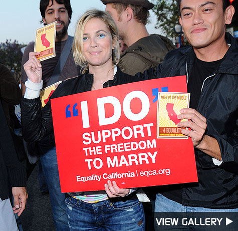 drew barrymore protests proposition 8